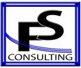 fs consulting